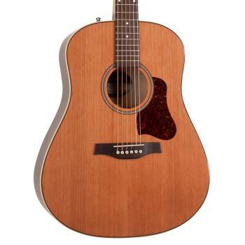 SEAGULL Coastline Momentum A/E HG. Guitarra Acústica