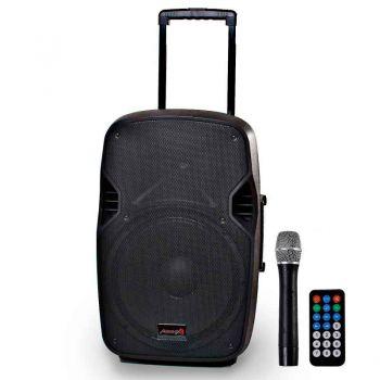 Audibax DENVER Combo PORT10 VHF Altavoz Portátil Bluetooth con Batería y Micrófono