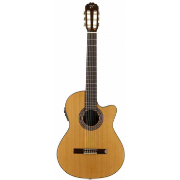 Jose torres JTC-20CE Guitarra Clásica Electrificada