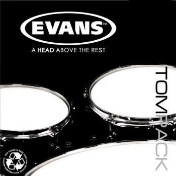 Evans ETPONX2F, Parches, 10