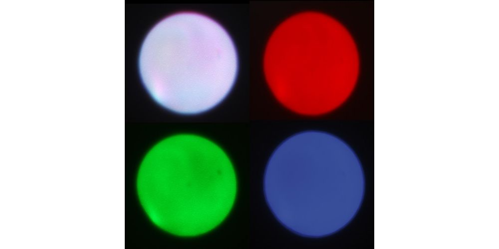ibiza light led spot 10w 3