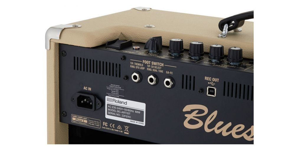 roland blues cube artist back