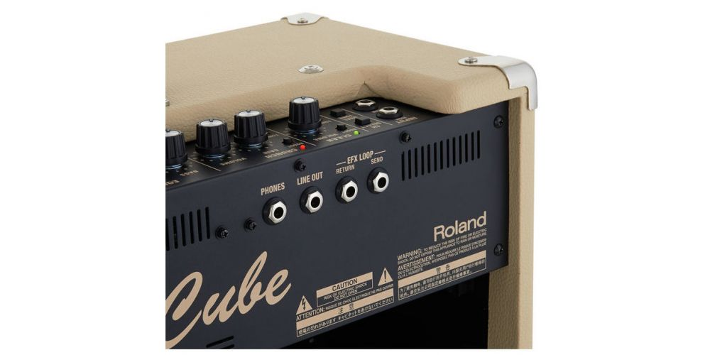 roland blues cube artist back2
