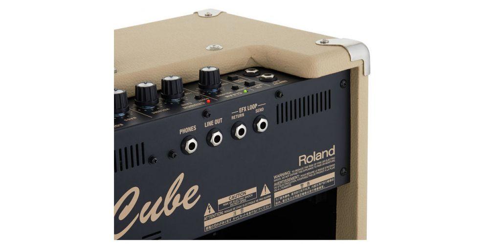 Roland Blues Cube Artist Amplificador