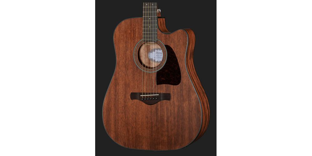 ibanez aw54 ce opn frontal
