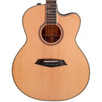 Larry Carlton A4-G Guitarra Acústica Cutaway Natural