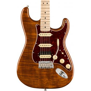Fender LTD Rarities Stratocaster Flame Maple Top RW MN Golden Brown