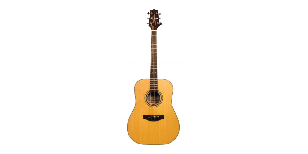 takamine gd20ns front