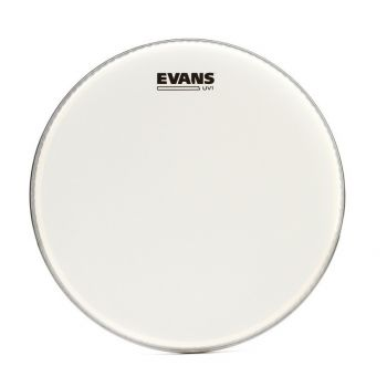 Evans 12 UV1 Coated Parche de Caja B12UV1