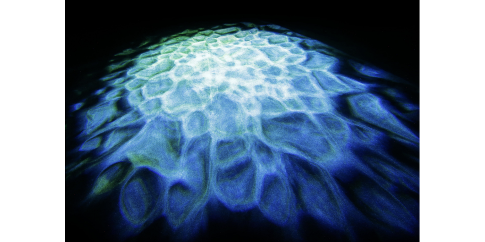 cameo scuba luz de efectos acuáticos mh