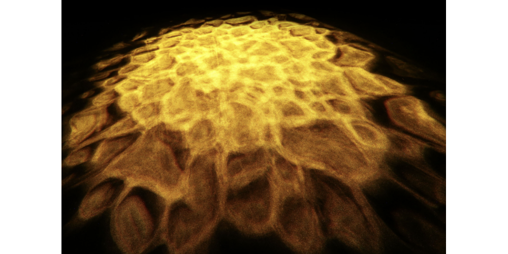 cameo scuba luz de efectos acuáticos oferta