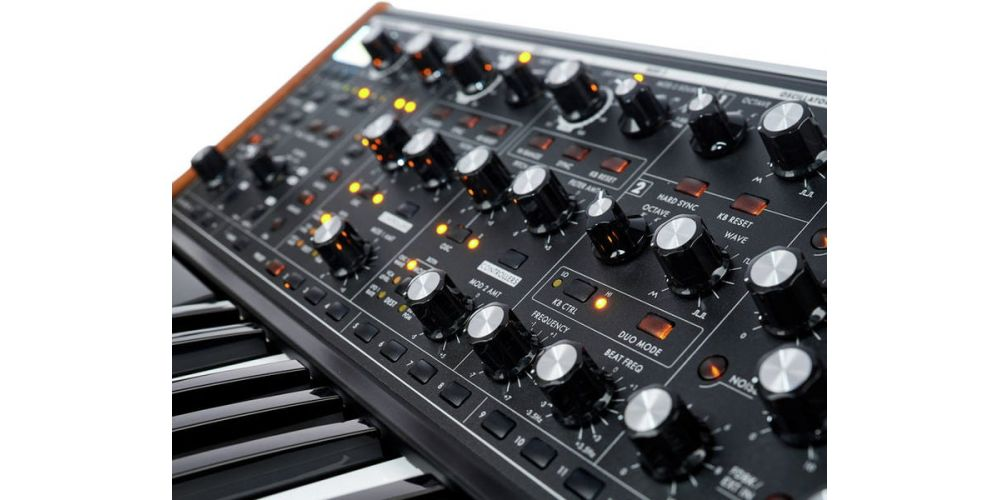 moog subsequent 37 sinte