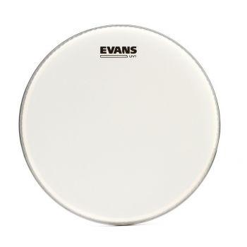 Evans 10 UV1 Coated Parche de Caja B10UV1