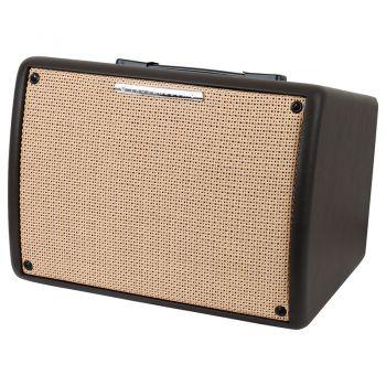 Ibanez T30II Combo Guitarra Acústica 30W