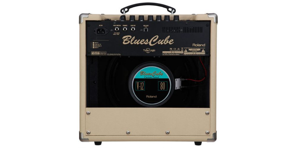 roland blues cube hot vb back