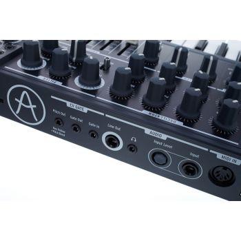 ARTURIA MICROBRUTE Sintetizador analógico monofónico compacto 25