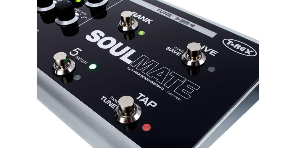 T-Rex Soul Mate