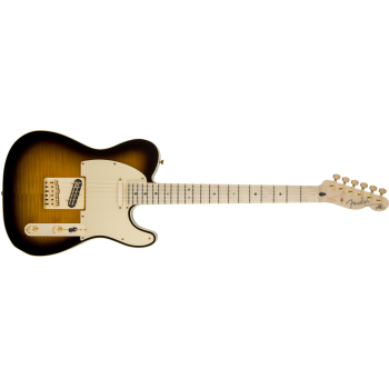 Fender Richie Kotzen Telecaster Maple Fingerboard Brown Sunburst